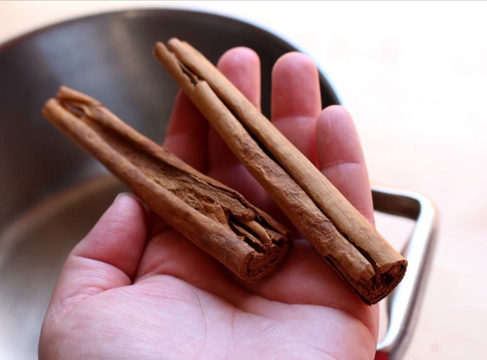 Hand holding two cinnamon sticks.