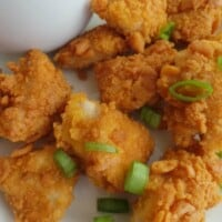 Goldfish Chicken Nuggets | In Mama Maggie's Kitchen