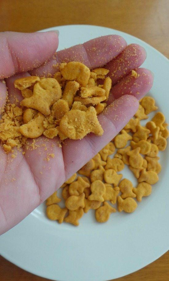Goldfish | In Mama Maggie's Kitchen