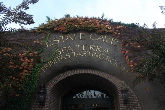 Estate Cave Trinitas Tasting Room