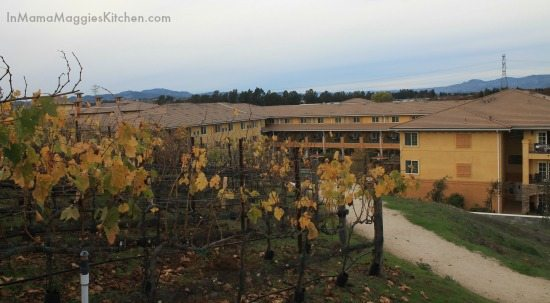 Meritage Resort and Spa in Napa