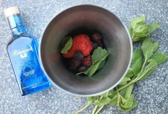 Berry Mint Gin, Bluecoat gin, berries and mint