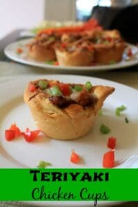 Teriyaki Chicken Cups | In Mama Maggie's Kitchen