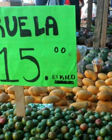 Plums at the Mercado in Tabasco, Mexico - Mama Maggie's Kitchen