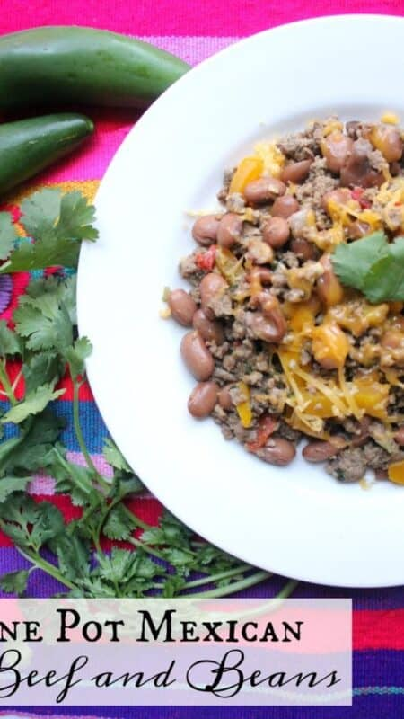 One Pot Mexican Beef and Beans - Savor the flavors of this easy beef recipe. Made in one pot and absolutely perfect for busy weeknights- by Mama Maggie's Kitchen