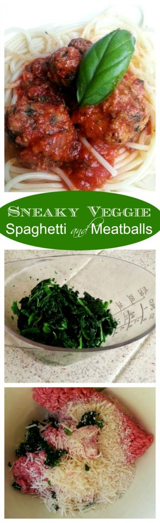 Sneaky Veggie Spaghetti and Meatballs - a great way to get your kids to eat their veggies - by Mama Maggie's Kitchen