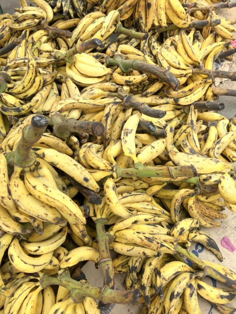 Bananas in Tabasco, Mexico