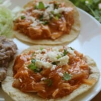 Chicken Tinga Tostadas on a white plate topped with cilantro and cheese.