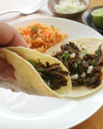A hand holding a beef ancho taco over more tacos.