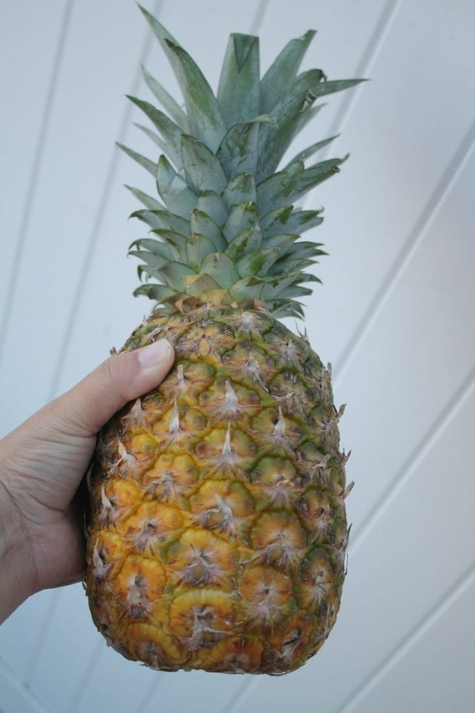 Hand holding fresh pineapple