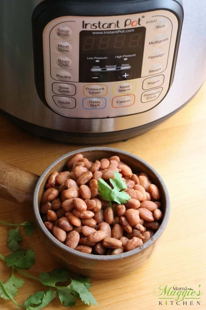 Bowl of Pinto beans next to an Instant Pot