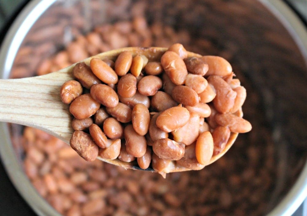 Spoonful of Cooked Pinto Beans