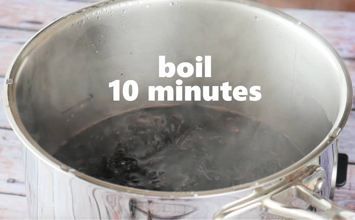 Water boiling in a medium sized stock pot.