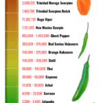 An infographic of the Scoville Scale showing chile peppers from hot to mildest.