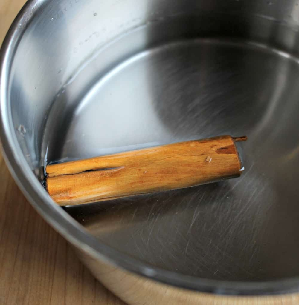 Cinnamon stick and water in a metal pot.