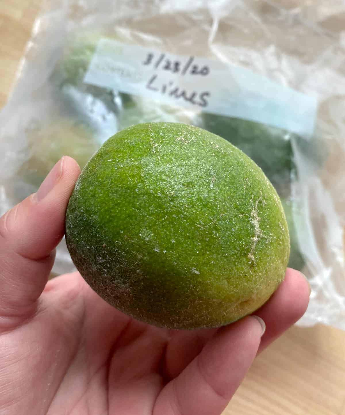 A hand holding a frozen lime.