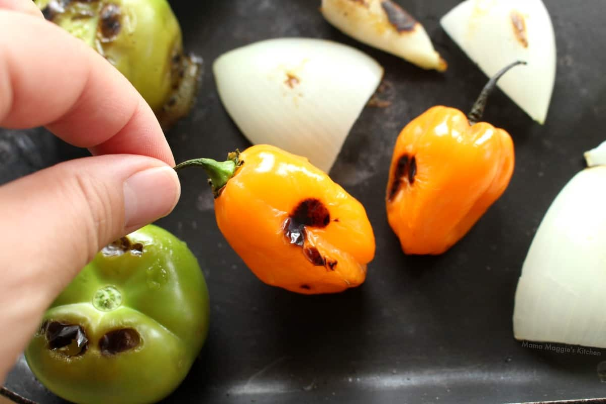 Hand holding the stem of a roasted habanero.