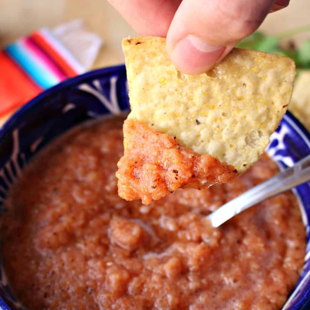 Hand holding a chip with salsa.